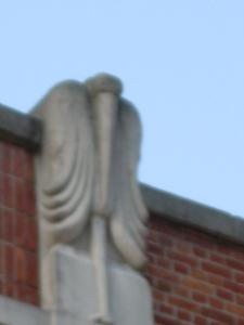 A pelican?